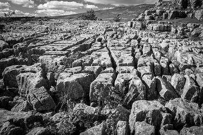 Malham Cove, Limestone Pavements,