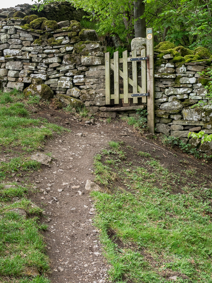 A Path through the Dales
