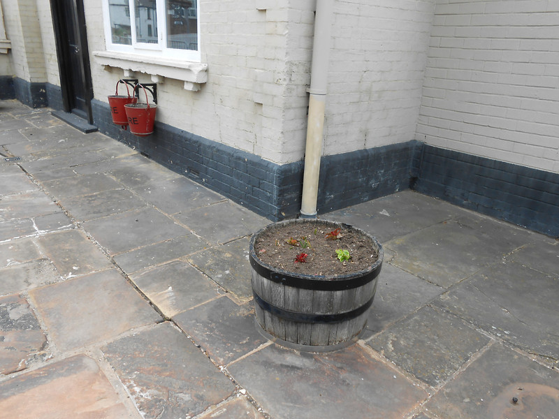pic by Liz <br /> <br /> Even round flower tubs on the old part of the platform now long out of use