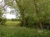 pic by Liz <br /> <br /> the area behind the waiting room is quite rural as can be seen by this pic and the next
