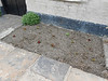 pic by Liz <br /> <br /> Rather well kept flower beds complete with plants