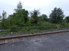 Picture by Liz <br /> <br /> Shot taken from the Leeds / knottingley end of the Platform of the <br /> <br /> remains of the old platform