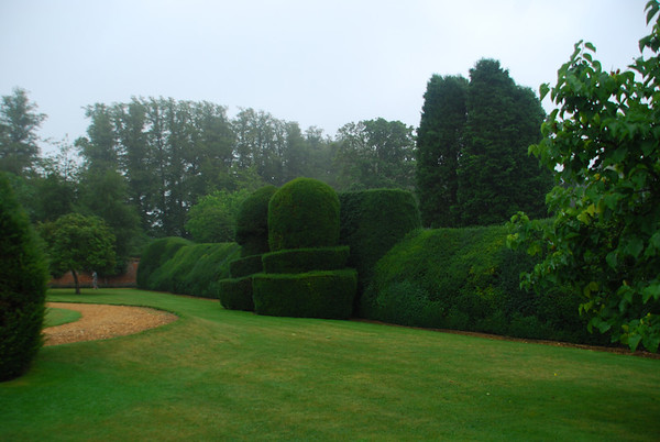Quaint Topiary