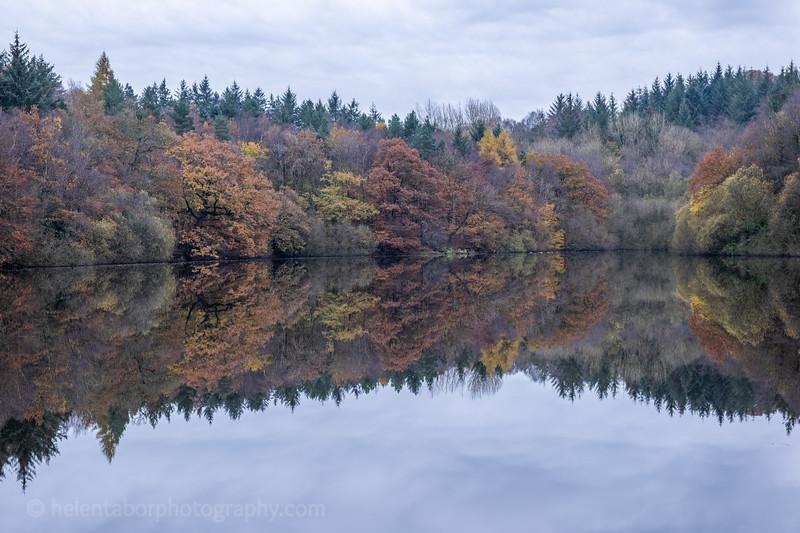 Eavestone Lake, 9 Nov 19-43.jpg