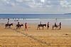 Beach Donkeys - Scarborough