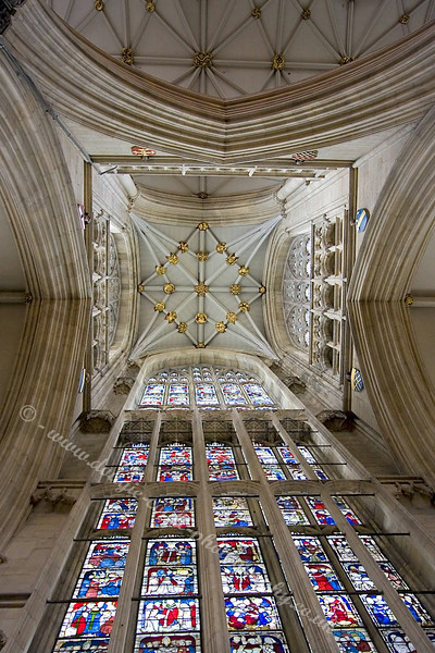 Minster Ceiling