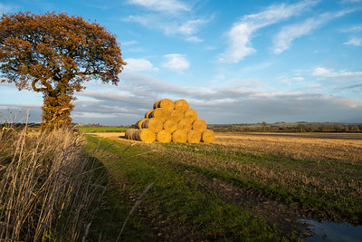 stack of hay bales near Richmond, Yorkshire   .