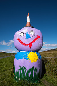 gaily painted wrapped hay bale, near Hawes, wensleydale, yorkshire,  UK