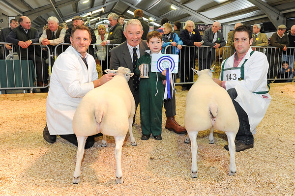 CSL 14 Reserve champ pair of butchers lambs L-R Lewis Cattermole, Judge Alex Brown, 5 year old Jack Whiteford and James Whiteford from Carlisle
