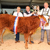 CSL 14 Supreme Beef Limousin X More of That owned by Phil  & Sharon Sellers from Lincoln presented by Martin Wood from Ripon Select Foods