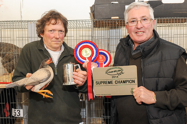 CSL 14 Poultry Supreme Champion John Fawcett & Barrie Alcock from Great Ayton with their Old English Game Off Colour Blue pullet
