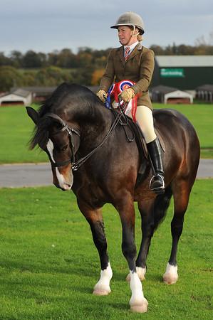 CSL M&M Ridden Champion Emma Boardman (34) from Preston riding Dyffryngwy Sir Picasso