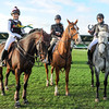 CSL 14 Northern Show Cross Relay winners L-R Hollie Davison (23) from Durham riding Dalina (6 a Dutch Warmblood, Samantha McNicholas (26) from Darlington on 12 year old Vayram and Kaylie Ritson (26) from Morpeth riding Krafted Miracle a 6 year old Irish Sports horse