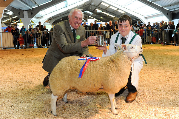 CSL 14 Champion Young Handler Richard Lancaster aged 14 from Clitheroe with his Blue Texel X Beltex presented by steward Philip Hughes.