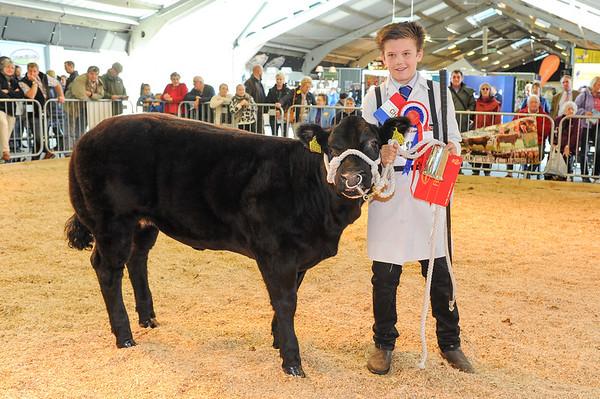 CSL 14 Champion young beef handler Luke Wilkinson (13) from Leyburn.
