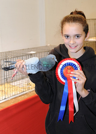 Twelve year old Taylor Cassidy and her junior champion Runner Pouter