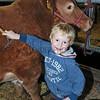 044 cattle prep