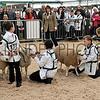 051 sheep young  handler
