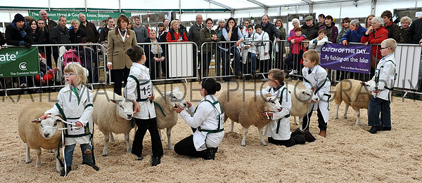 050 sheep young handlers