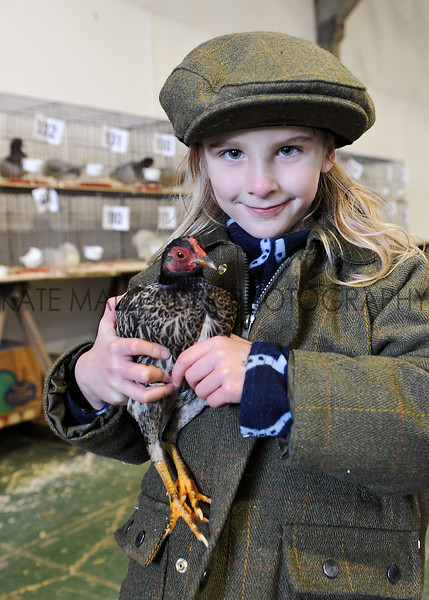 CSL 12  Six year old Lydia Beard competeing in the poultrycompetition.