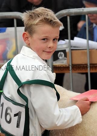 092 sheep young handlers