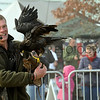 019 birds ofprey