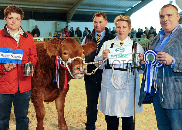 CSL 12 Res Supreme Champion No Likey No Lightly owned by Charlotte Alford from Devon with (L-R) Tom Wood (Ripon Select), Michael & Charlotte Alford & Martin Wood (Ripon Select)