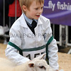 067 sheep young handler