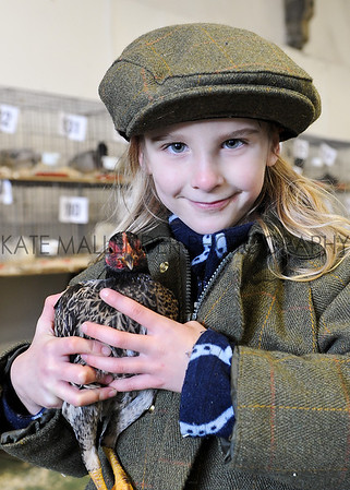 CSL 12  Six year old Lydia Beard competing in the poultrycompetition.