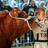 046 young beef handler
