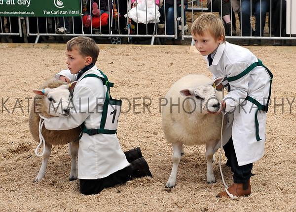 059 sheep young handlers