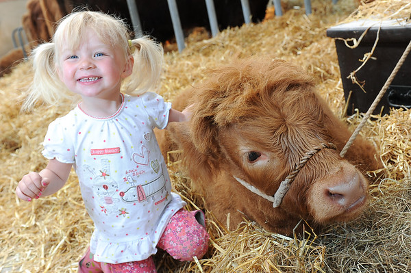 GYS 14 _053_calf and child