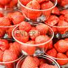 GYS 14 _007_food gv