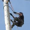 GYS 14 _182_Pole climbing champs