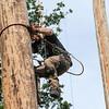 GYS 14 _187_Pole climbing champs
