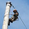 GYS 14 _190_Pole climbing champs