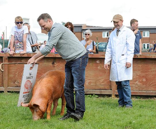 GYS 14 _126_One man & his pig