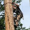 GYS 14 _186_Pole climbing champs