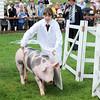 GYS 14 _136_One man & his pig