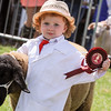 GYS 14_159_sheep young handlers