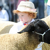 GYS 14_148_sheep young handlers