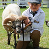 GYS 14_171_sheep young handlers