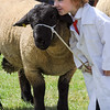 GYS 14_152_sheep young handlers