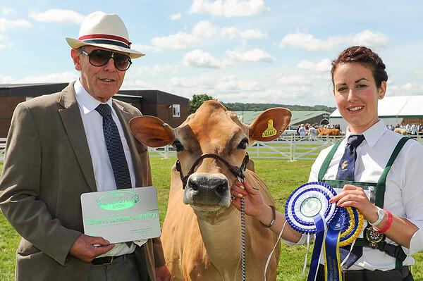 GYS 14Supreme Dairy reserve Champion Rachel Richardson with Harsley Legal Weigelia (Jersey)