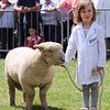 GYS 14_142_sheep young handlers