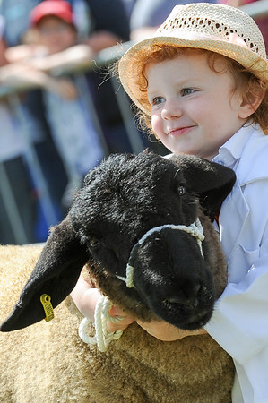 GYS 14_156_sheep young handlers