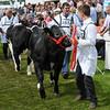 GYS 14_084_dairy GV