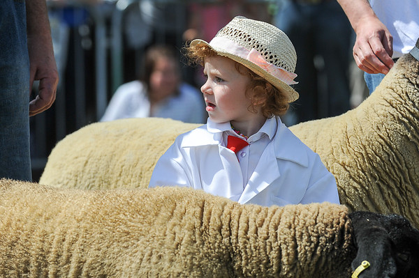 GYS 14_147_sheep young handlers