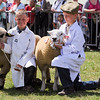 GYS 14_140_sheep young handlers