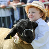GYS 14_155_sheep young handlers